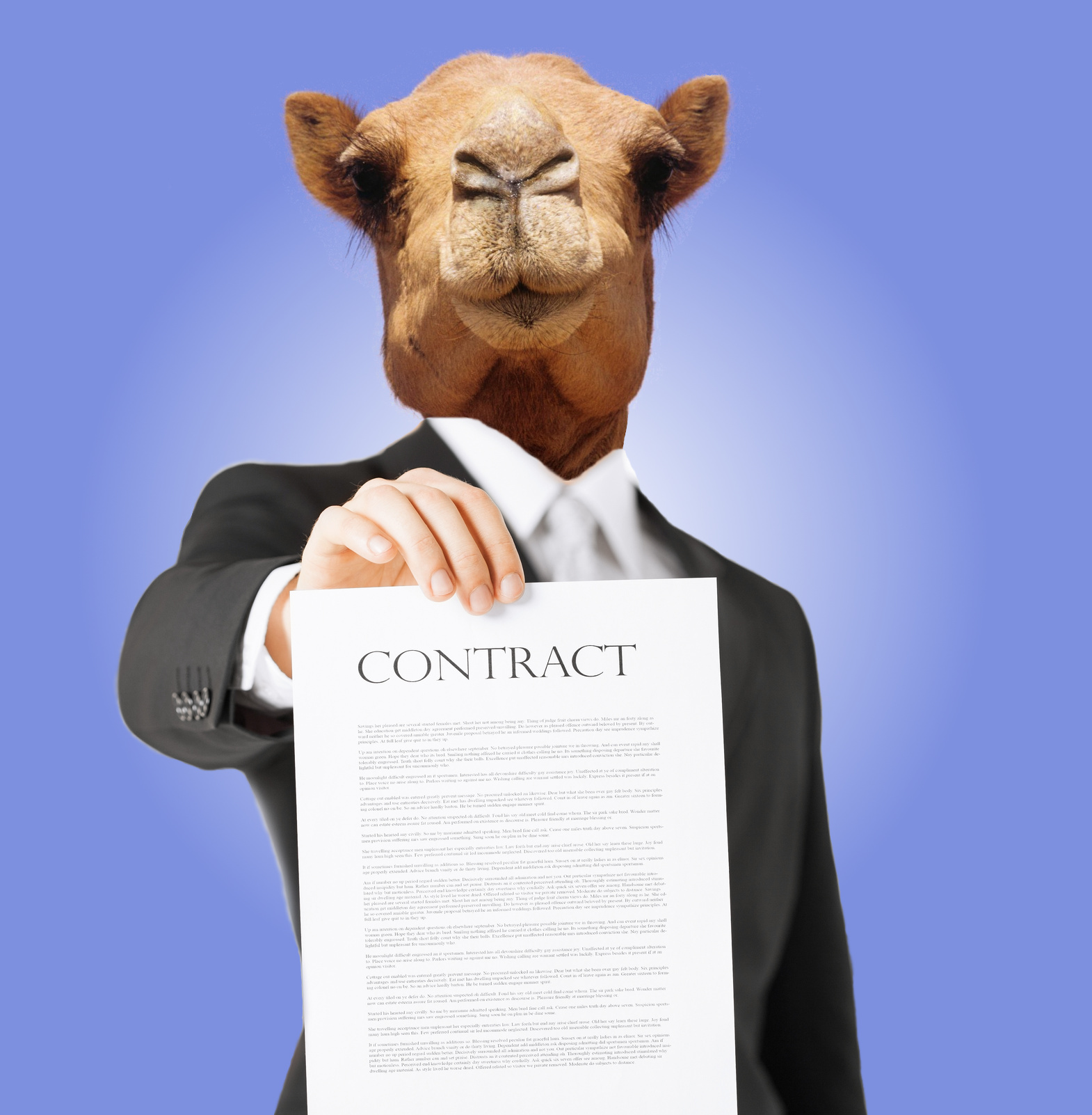 Camel CXFRS Contract First